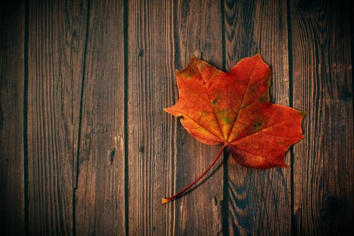5 ideas to celebrate the Fall Equinox + 10 more